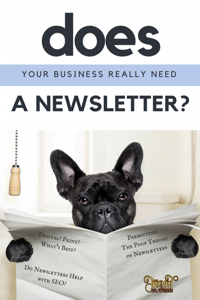 Newsletter Creation